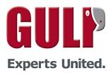 Gulp Berater Profil